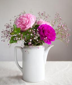pioenroos bloomproject